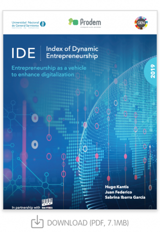 IDE Report 2019