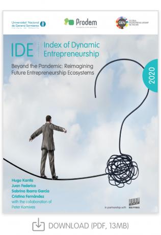IDE Report 2020